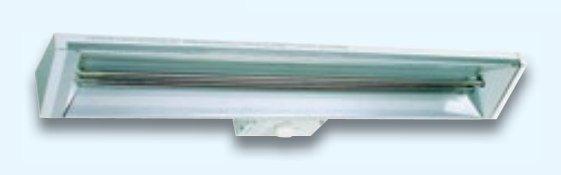 Säteilylämmitin RK4 S10 kytkimellä 1000 W